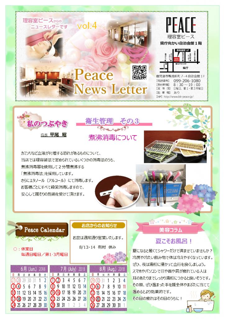 newsletter2018vol4